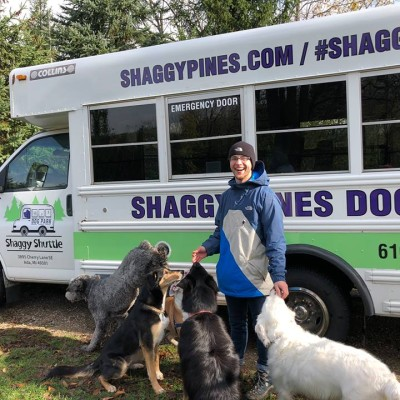 Shaggy pines dog park run em wash em love em all in one cool braden with shuttle dogs solutioingenieria Gallery
